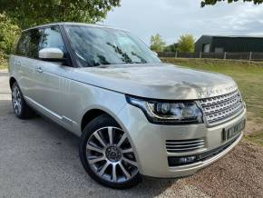 Land Rover Range Rover 3.0 TDV6 Vogue SE 4dr Auto (21in Alloys! Pan Roof! Big Spec! +) Estate Diesel Luxor Gold Premium Metallic at Williams Group Ltd Maidstone