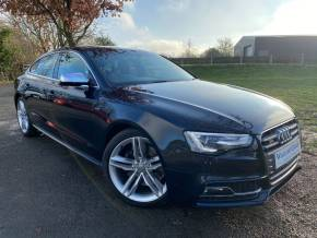 Audi S5 3.0 Quattro 5dr S Tronic (Teck Pack! Low Miles! ++) Hatchback Petrol Moonlight Blue Metallic at Williams Group Ltd Maidstone